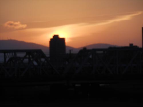第一回淀川寛平マラソンとバードウォチング