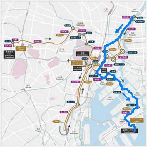 東京マラソンのコースを歩いてみよう♪ Vol.4 浅草→有明(東京ビッグサイト) 約16km~無事にゴール♪~