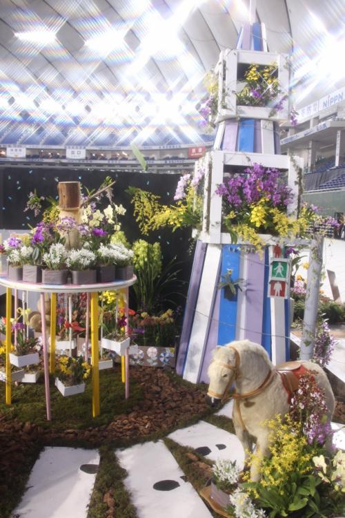 春を呼ぶ蘭の祭典~東京ドーム ...