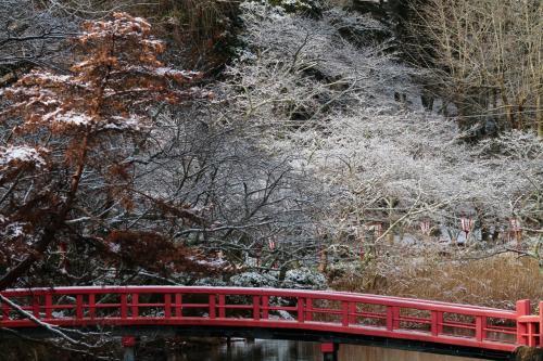 茂原公園(千葉県茂原市)