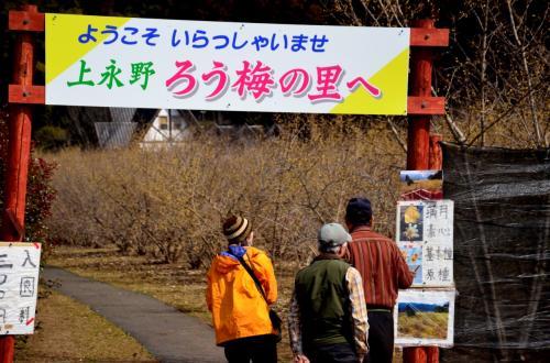 早春の栃木県南・花街道