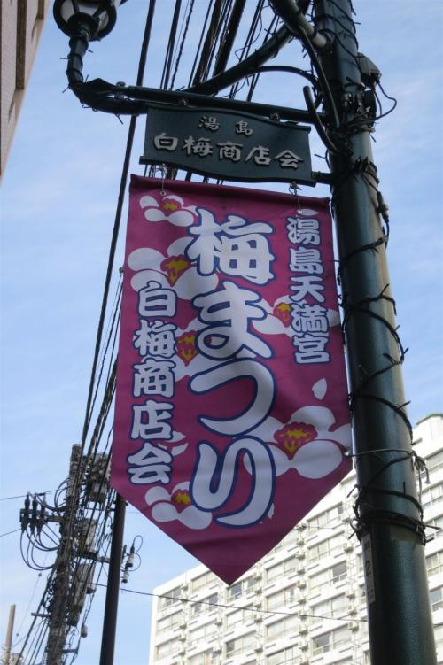 湯島天神 梅観賞2013 初見