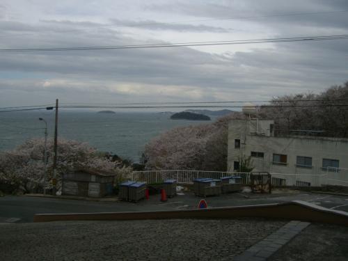 西浦温泉の日帰り入浴へ行きました。桜もオマケ付き。