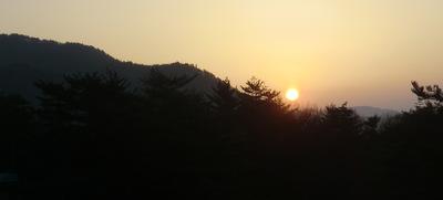 高遠のコヒガン桜と立山「雪の大谷」を巡る旅♪ vol. 2 積雪18mの雪の大谷を歩く、ダイナミック立山黒部アルペンルート♪