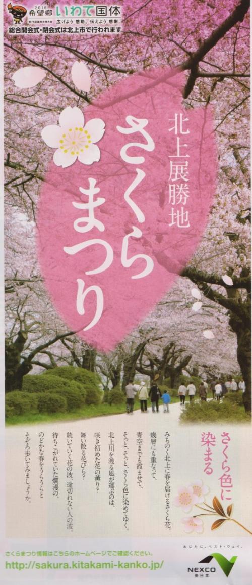 桜//北上・展勝地