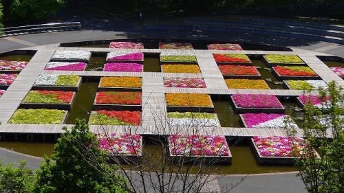 庭園紀行(27)・・・とっとり花回廊 展望回廊を一周 前編