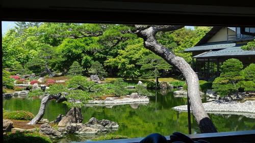 庭園紀行(41)・・・由志園の庭園観賞後、綺麗なお庭を見ながらお茶しました。