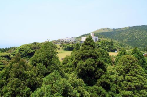 好天に恵まれたGWー家族旅行で宮崎・鹿児島へその2ー日本で唯一の野生馬生息地都井岬と霧島温泉霧島観光ホテル滞在記編ー