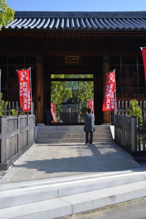 神戸新聞で見つけた♪多門寺のカキツバタ