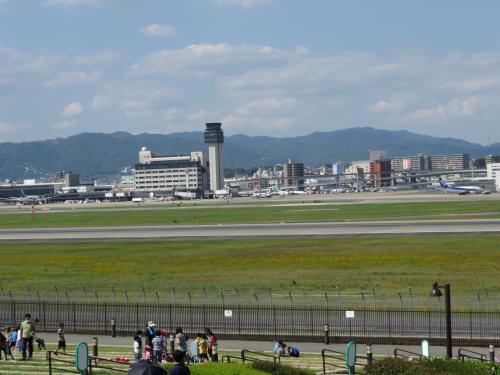 伊丹空港に噂のB787機を見に行く!