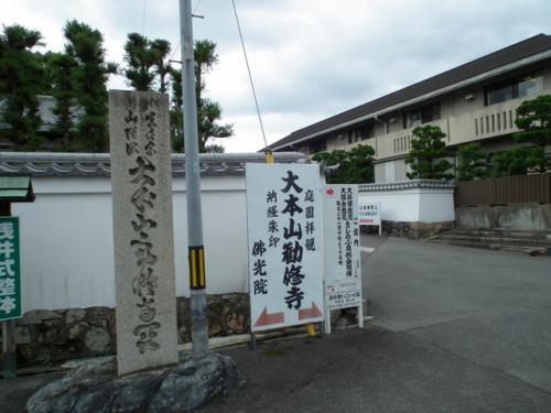 勧修寺 紫陽花・花菖蒲・睡蓮!2013年