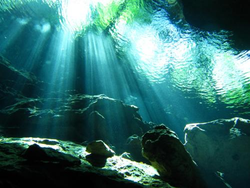 「水中洞窟 光のカーテン」の画像検索結果