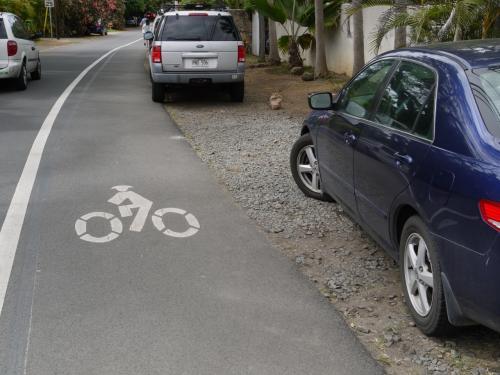 ... 自転車 専用 です 自転車 専用