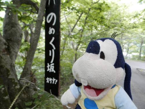 グーちゃん、お盆に青森で湯治する!(ランプの宿/タマタマ危機一髪!編)