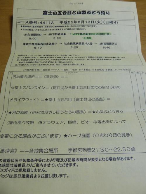 栃木発・日帰りツアー 【富士山五合目と山梨ぶどう狩り】