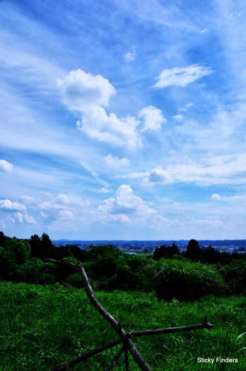 ふるさとの森公園~烏山線