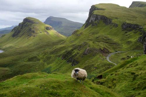 アイル・オブ・スカイ (Isle of Skye)