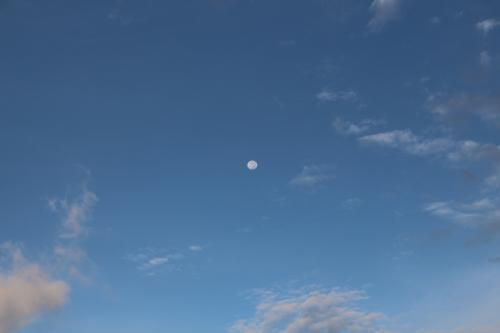 2013 まだ夏だよ~ 沖縄~ vol.2 《朝の散歩&朝食》