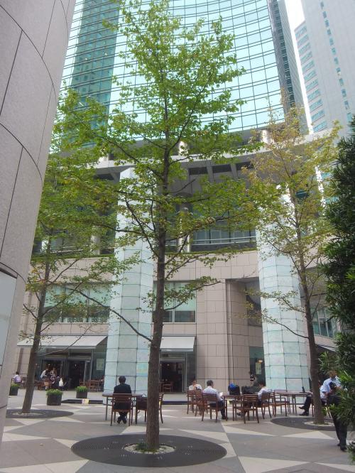 東京の地下鉄路線を歩こう! 第10弾:都営大江戸線(汐留~光が丘)