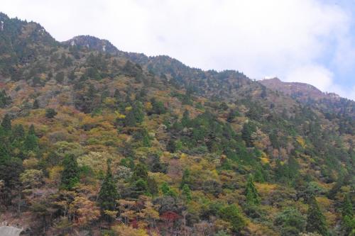 鈴鹿山系・御在所岳の紅葉と久しぶりに近江・永源寺