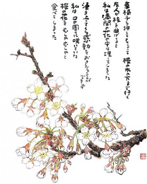 星野富弘の画像 p1_15