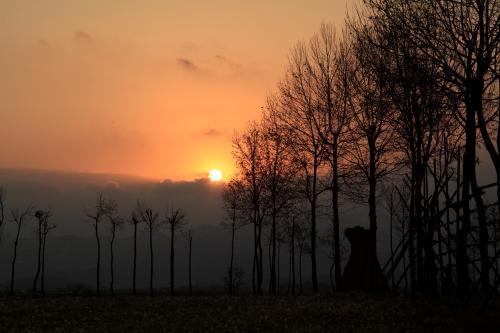 新潟 福島潟の初日の出と池ケ原のはさ木