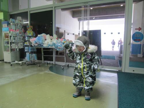 ハル坊と行くε=ε=~(=^‥^ )/  ☆冬の小樽水族館☆