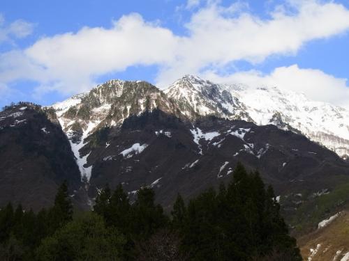 八海山麓のカタクリ群生を観る