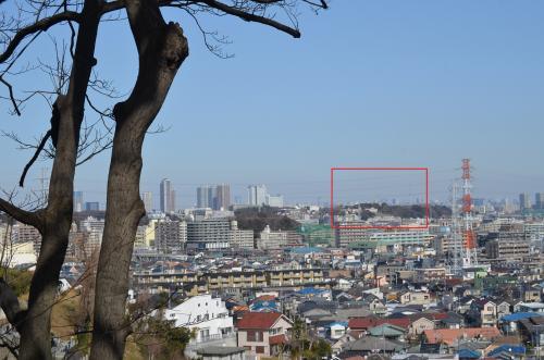 横浜ぶらぶら 春はまだか 大倉山梅林、入江川せせらぎ緑道、馬場花木園