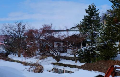 雪景色を見たくて青森へー6  歴史と心豊かな人の住む 黒石の街へ 下