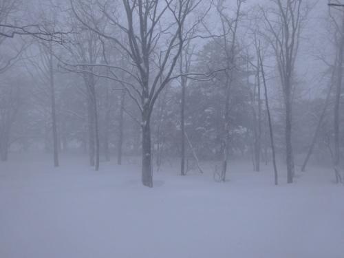 大雪の日光へ(2) 雪崩で帰れない!