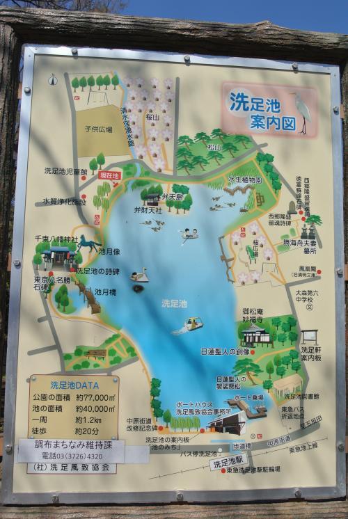 東京散歩『花めぐり(洗足池公園・桜坂)』