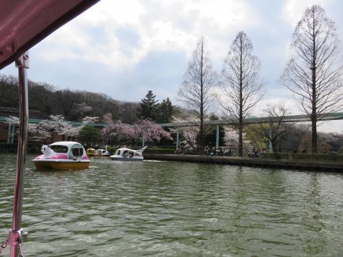 桜競演・名古屋市内の桜の名所をぐる~り散策。疲れました~