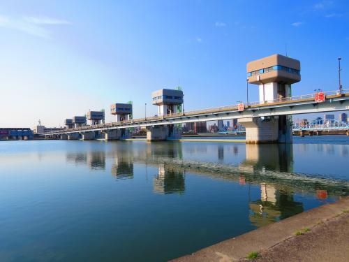 淀川河川敷公園・背割堤までバードウォチング!