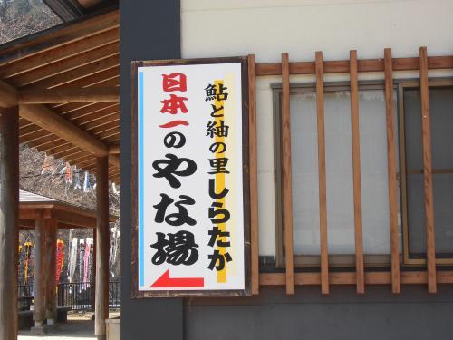 「あゆ茶屋」に鯉のぼりが泳いでいます。