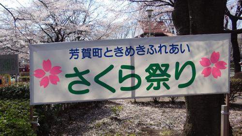 桜追っかけ一人旅(63) 芳賀町 かしの森公園さくら祭り