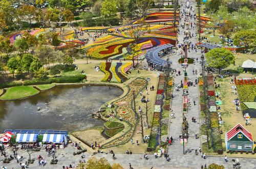 日本一大きな国営公園 木曽三川公園で「チューリップ祭2014」