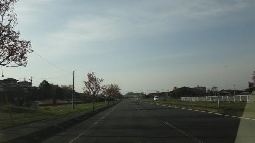 桜追っかけ一人旅(84) 早朝の道の駅 しもつま に立ち寄り