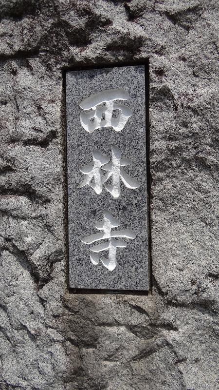 桜追っかけ一人旅(92) 守谷市 西林寺の枝垂桜