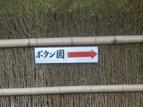 大垣市お茶屋敷跡・まるで時間が止まったかのような錯覚に陥る空間で牡丹を愛でるショートトリップ・・・・