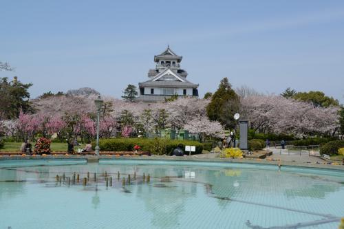 長浜城(豊公園)での花見