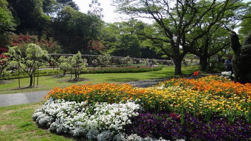 浜名湖花博2014(14)・・・浜松フラワーパーク③ 白藤園の観賞
