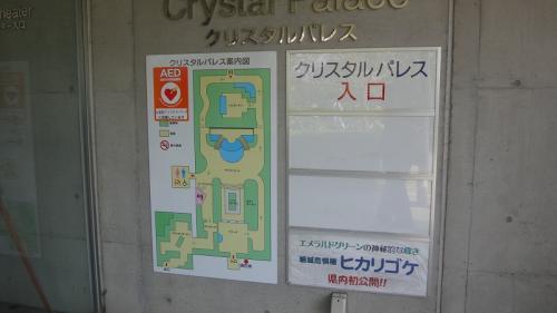 浜名湖花博2014(18)・・・浜松フラワーパーク⑦ クリスタル・パレス内の植物 上巻