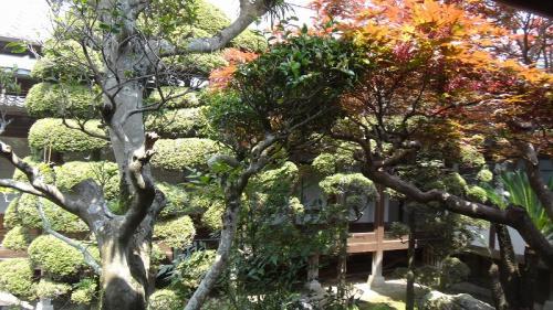 浜名湖花博2014(25)完・・・可睡斎の参拝と昼食⑤完 諸堂拝観。