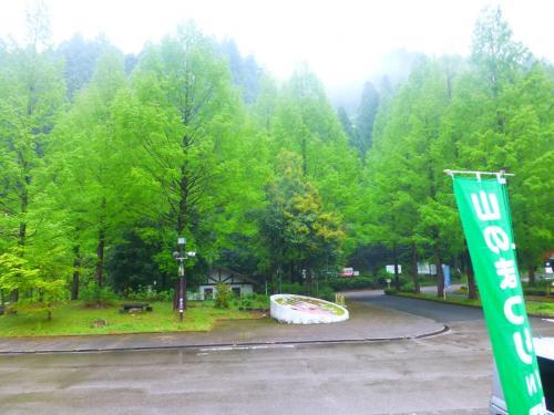 新緑の板取街道をひた走り・・・・渓の恵みと山の幸に舌づつみ