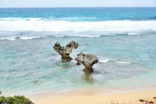 結いの島 今帰仁城址 と きれいな海を見たい!