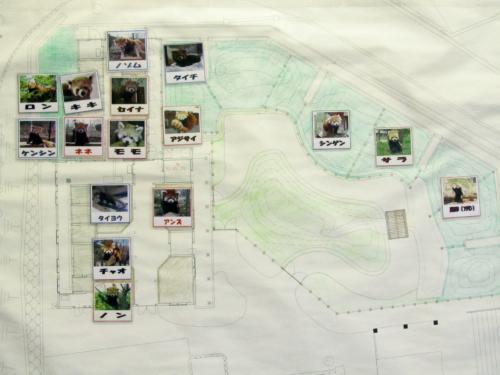 長野新幹線に乗って茶臼山動物園へ2014年のGW後半のレッサーパンダ詣(2)Red Panda 特集:屋内パンダはタイヨウくん・アンズちゃん・チャオくん・ノンちゃん