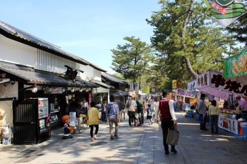 いにしえの古都/奈良の観光地を駆け巡れ!!【東大寺~興福寺、薬師寺編】