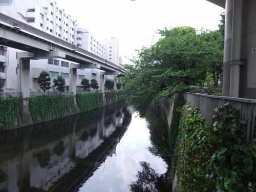 目白(江戸川橋)界隈の散策・神田川・椿山荘他をご案内