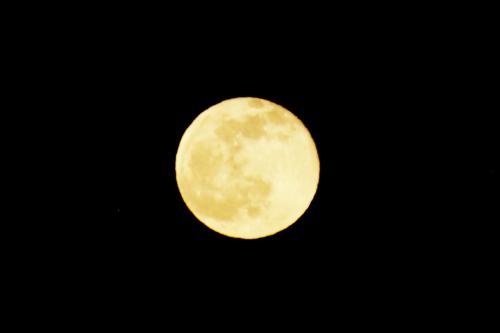 今夜は満月! 月光浴の夕べ